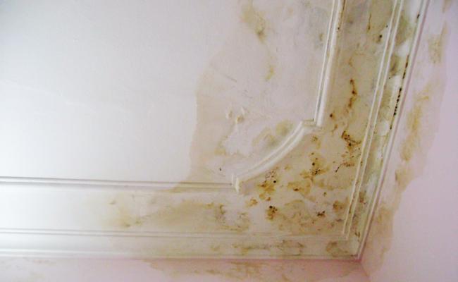 Nguyên nhân trần nhà bị thấm dột